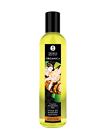 Shunga Erotic Massage Oil Organica